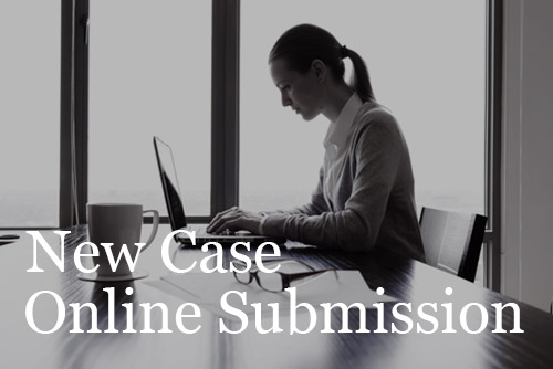 Begin Your New Case Online Submission